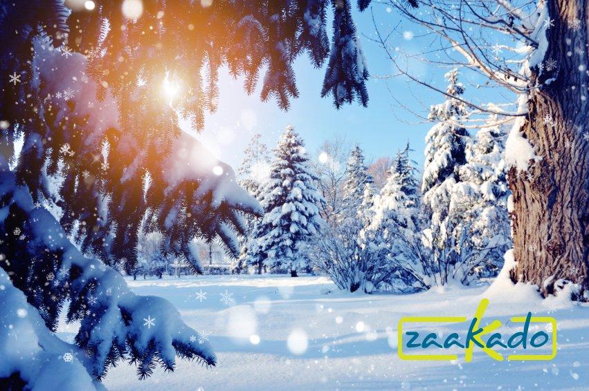 Eindejaarsgeschenken en Kerstgeschenken 2015 - ZaaKado