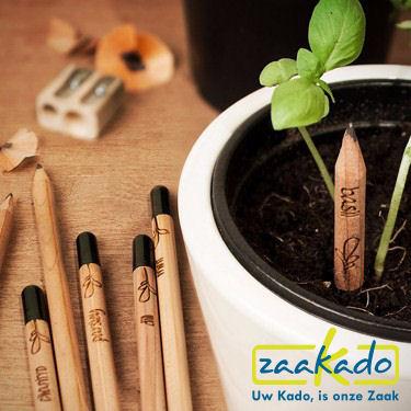 Groeiende potlood met zaden met uw bedrijfsnaam gravure als uniek origineel relatiegeschenk MVO ECO duurzaam groen CSR