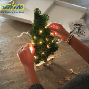 Mini kerstboom basisschool hogeschool adviesbureau zorginstelling ziekenhuis verzekeringsmaatschappij advocatenkantoor bedrijven organisaties relatiegeschenk brievenbus geschenk kerst kerstmis ZaaKado Rotterdam